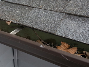 Wayne's Home Services gutter cleaning services