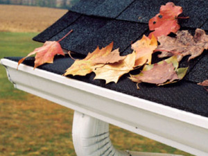 Wayne's Home Services gutter guards covers cleaning
