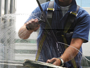 Wayne's Home Services window washing services