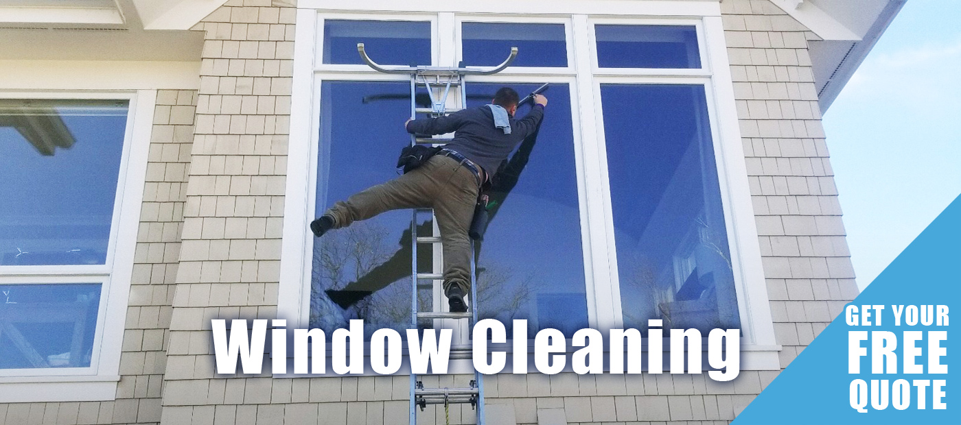 window cleaning services by waynes home services